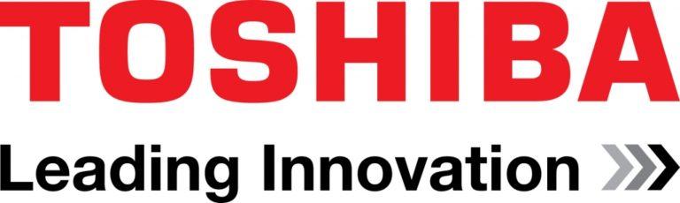 Work as Pan European Media Consultant, Toshiba Europe